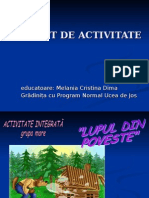 Proiect de Activitate Mena