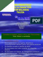 stresulsisanatatea-110119132004-phpapp02