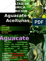 Aguacate.pptx