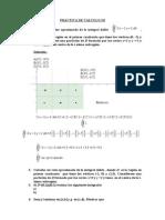 Práctica de Cálculo III