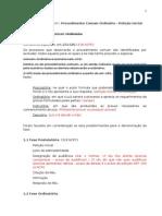 1 Procedimento Ordinário e Petição Inicial
