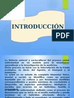 triadaecolgica-110304131542-phpapp01.pptx