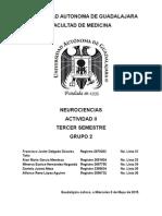 CASO-4-irrigacion-y-corteza (01).doc