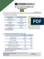Reporte Peru Brasil