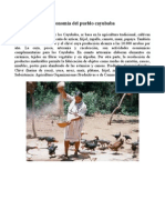 Economía Del Pueblo Cayubaba
