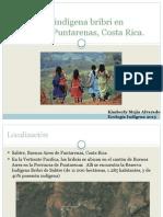 Población Indígena Bribri en Salitre