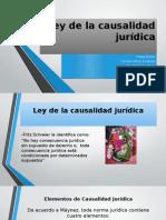 Ley de La Causalidad Jurídica FINAL