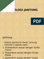 Histologi Jantung.pptx