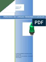 PERDIDA-DE-CARGA-MENORES-O-LOCALES (1).docx