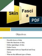 2-Skin and Fascia