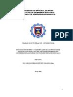 INFORME FINAL DE INVETIGACION 2012ok.doc