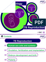 Reproductive Cycle.ppt
