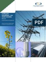 Conseil Mondial de l'Energie - Politiques d'efficacité énergetique