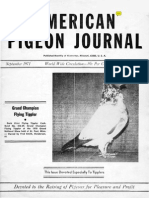 American Pigeon Journal-1971