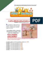9)Capitas para perros