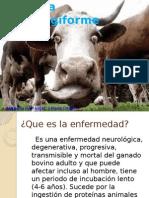 EncefalopatÃ-a bobina espongiforme.pptx