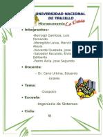 Microeconomía-Duopolio