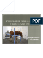 Desequilibrio Hidroeletrolitico e Fluidoterapia Em Equinos (1) (2)