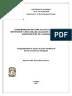 Beatriz_Romeu_Alvarez.pdf