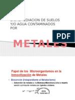 metales 3 agua y suelos.pptx