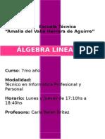 Planificacion Algebra lineal para secundaria
