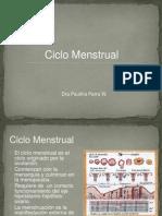 Clase 03 -Ciclo Menstrual
