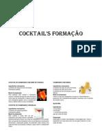 Cocktail Formação