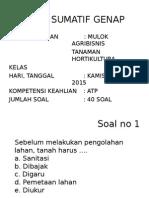 Soal Mulok Agribisnis Tanaman Hortikultura