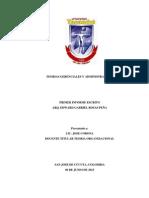 Primer Informe Edward Rosas-teoria Organizacional