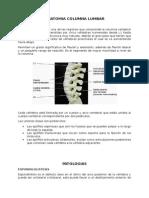 Anatomia Columna Lumbar