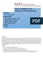 Seminario Embriologia Sistema Nervioso (1)