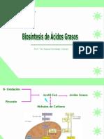 clase18biosintesisdeacidosgrasos-090716211541-phpapp02