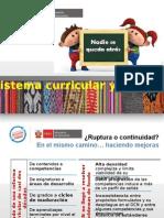 Curso Reforma Sistema Curricular - Puno