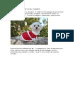 Patrones de Vestido de Navidad Para Perro