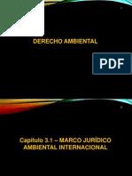 3 Cap. 03 - Derecho Ambiental 2015