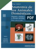Anatomía de los animales domésticos koning TOMO 2