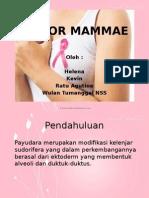 Tumor Mammae