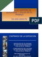 Sistema de Gestión de Seguridad y Salud en El Trabajo-ds. 009-2005-Tr