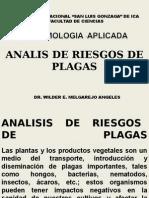 ANALIS DE RIESGOS DE PLAGAS