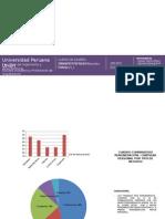Económico Productivo de huaycan