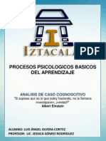 7. Analisis de Caso Cognoscitivo-Luis Angel Olvera Cortez Grupo- 0205