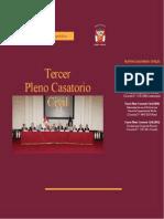 TERCER PLENO CASATORIO