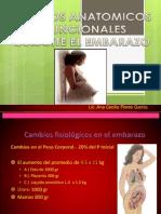 Modificaciones Fisiologicas Del Embarazo