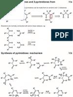 Heterocycles - PART 6 - Pyrimidines (1)