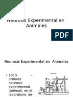 Neurosis Experimental en Animales