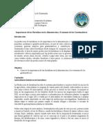 ensayo-de-hortalizas.docx