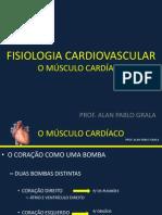 Músculo Cardíaco - Coração