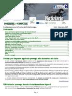 Notiziario n11
