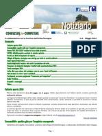 Notiziario n04
