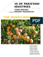 Mango industry P